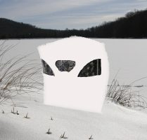 ALTAN BLINDS SNOW COVER